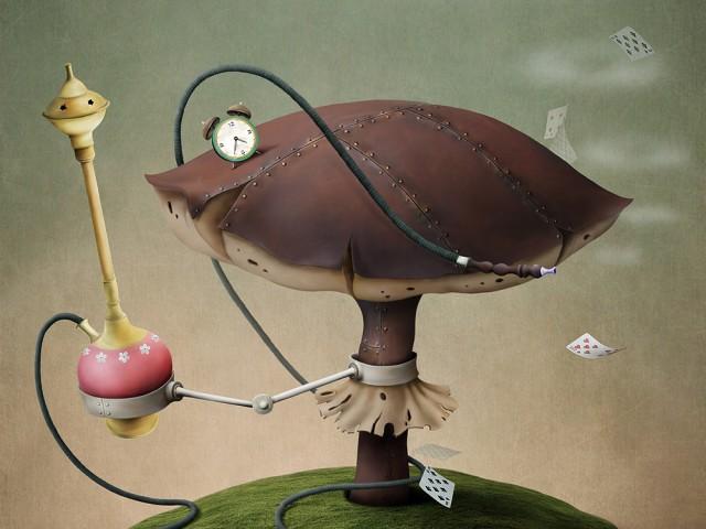 Il fungo del tempo